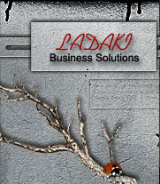 Ladaki Business Solutions - support - java and browser information